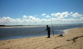 Competitive and sport fishing